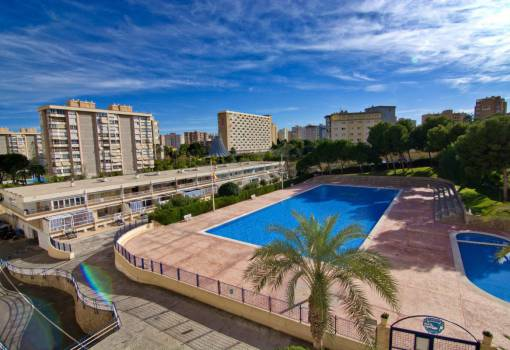 Studio - Resale - Alicante - Alicante